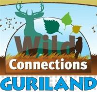 GURILAND